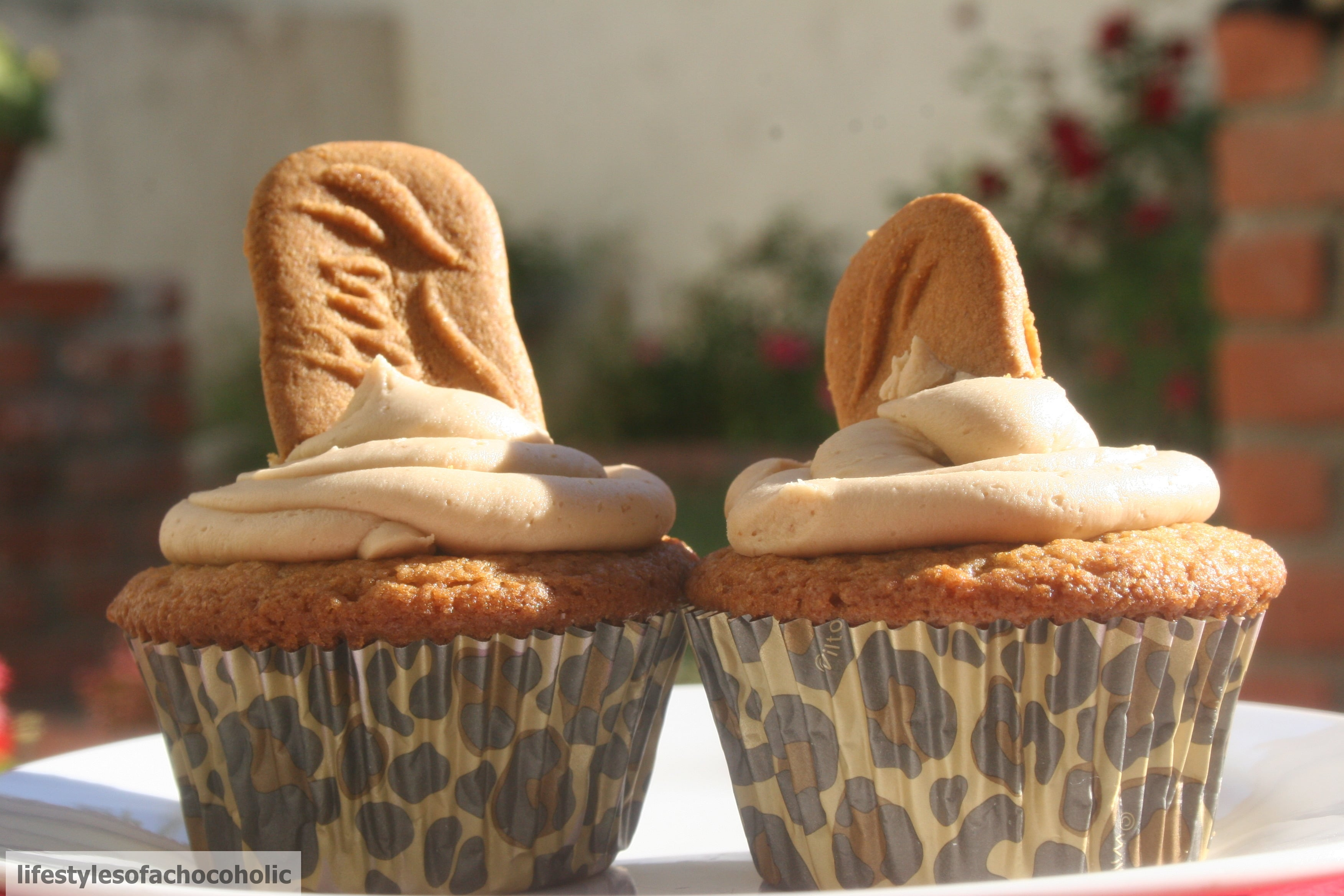 Biscoff Cupcakes www.confessionsofabakingqueen.com