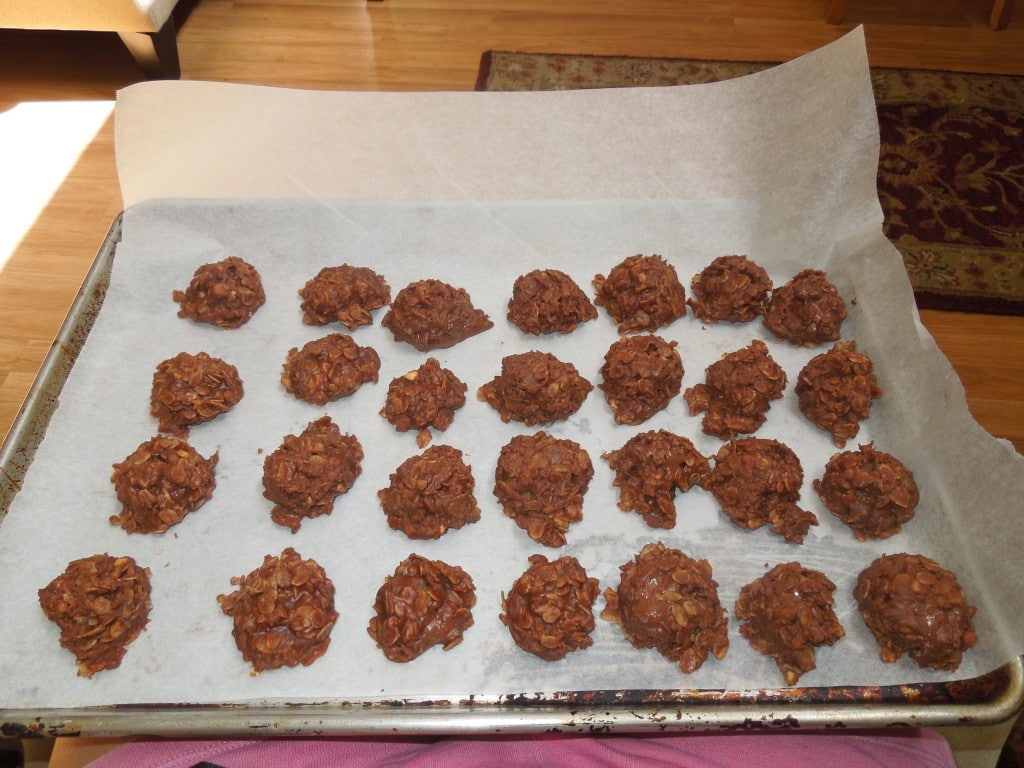 a sheet pan of no bake chocolate oat cookies sitting on someones lap