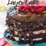 triple chocolate layer cake on a blue cake stand outside