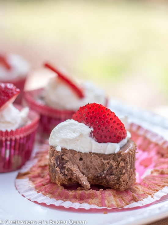 Double Chocolate Cheesecake Cups with a bite taken out