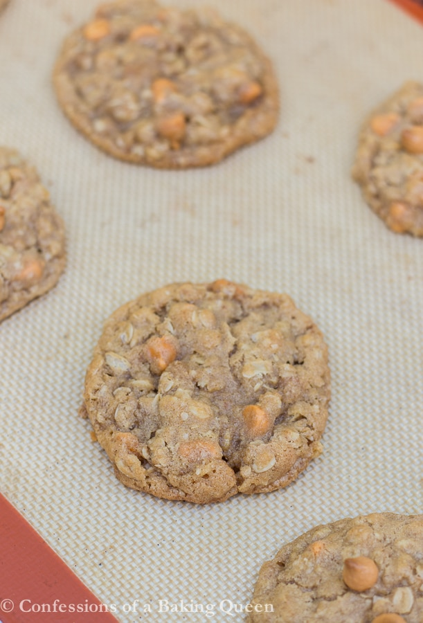 Cookie Butter Oat Butterscotch Cookies www.confessionsofabakingqueen.com