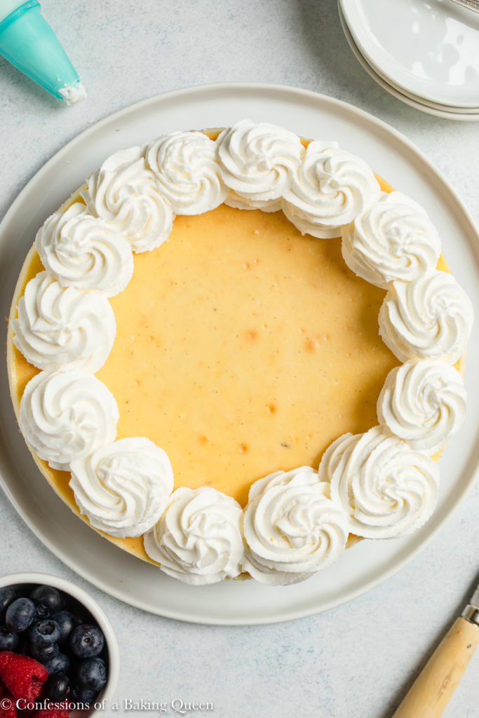 vanilla bean cheesecake with fresh whipped cream