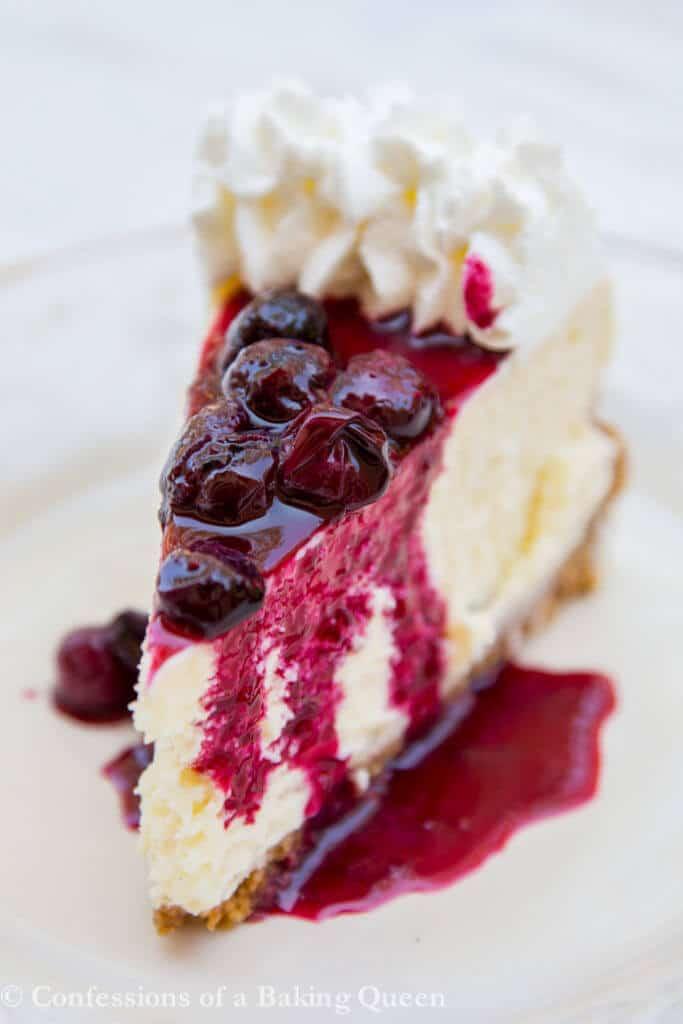 Blueberry Cheesecake Slice