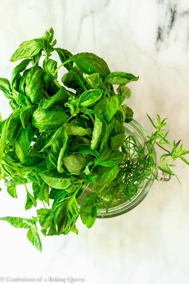 Easy Walnut Pesto Recipe fresh basil just picked sitting in a bowl of water