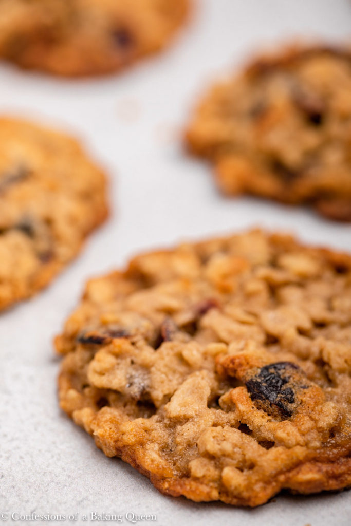 close up of an oatmeal cranberry cookie on a grey surface