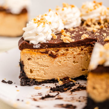 chocolate peanut butter cheesecake on a white plate