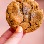 hand holding a pumpkin snickerdoodle over a reddish brown surface